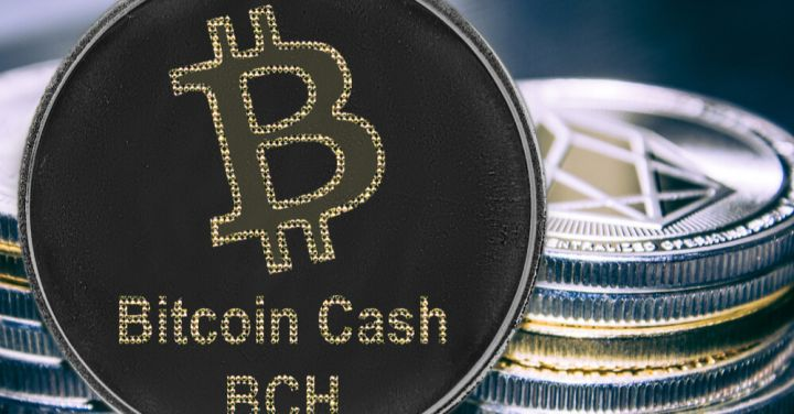 02_Bitcoin-cash-on-the-background-of-a-stack-of-coins.jpg