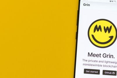 03_Grin-site-on-smartphone.jpg